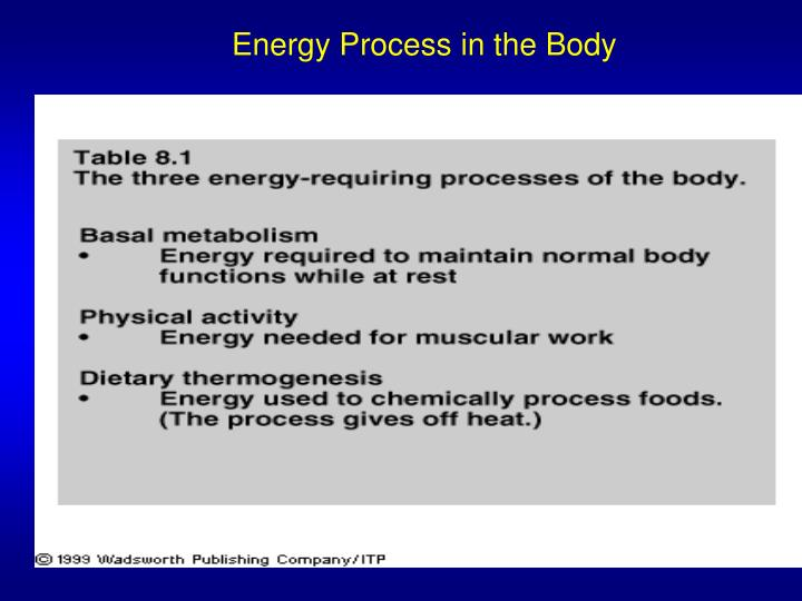 Energy Process in the Body
