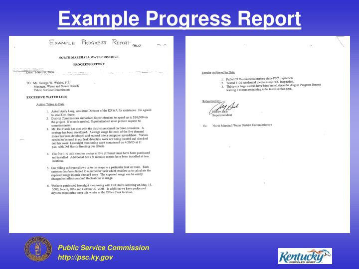 Example Progress Report