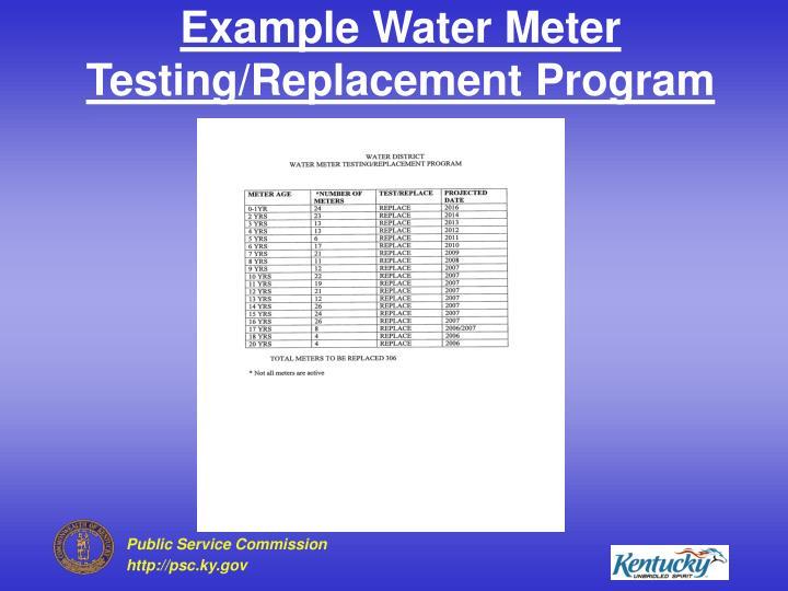 Example Water Meter Testing/Replacement Program