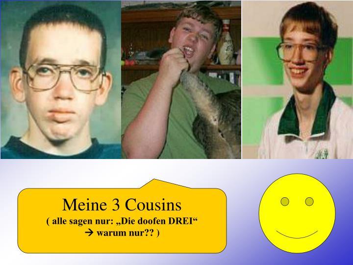 Meine 3 Cousins
