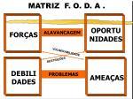 matriz f o d a2