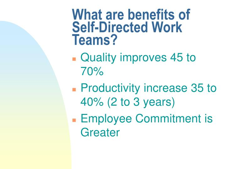 self directed work teams annotated bibliography Self-managed teams tend to be loss costly and more productive than employees working within a traditional hierarchical structure because the team performs both technical and management tasks.