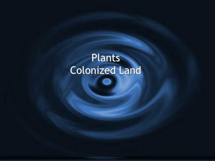 plants colonized land n.