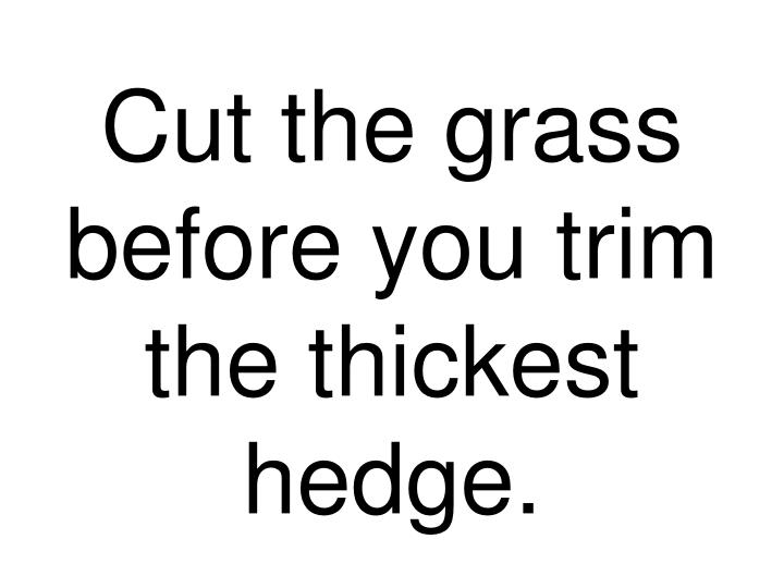 cut the grass before you trim the thickest hedge n.