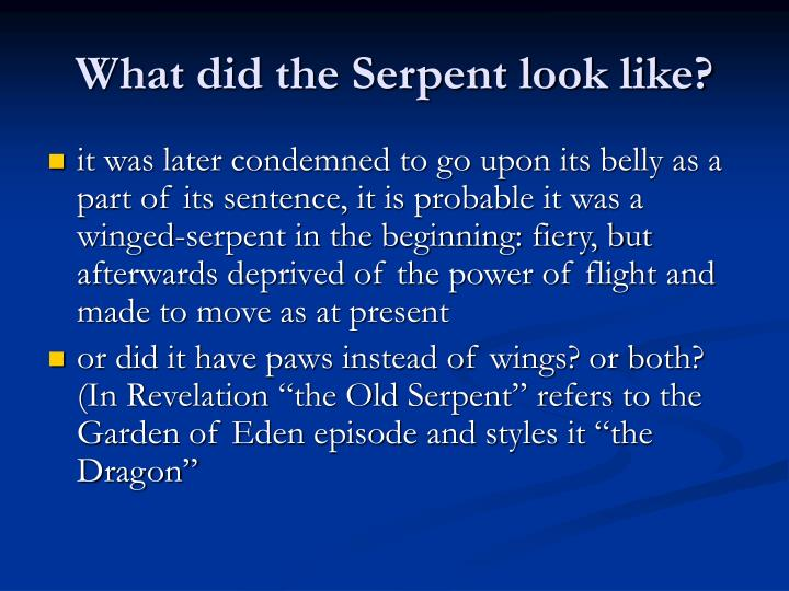 What did the Serpent look like?