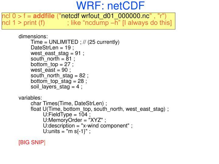 WRF: netCDF