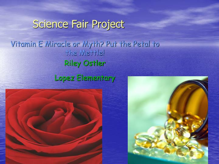 ppt - science fair project powerpoint presentation  free download