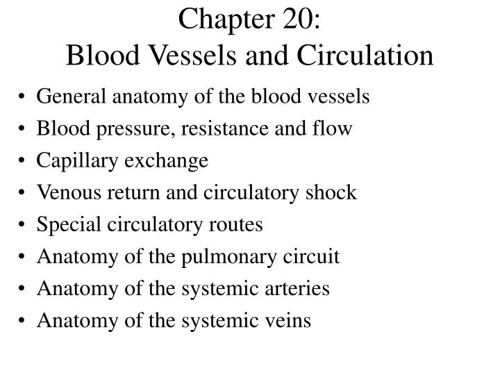 chapter 20 blood vessels and circulation n.