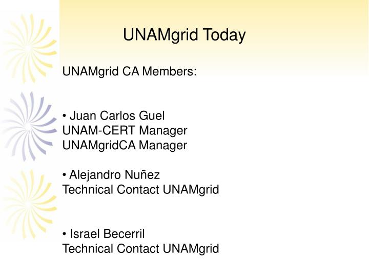 UNAMgrid Today