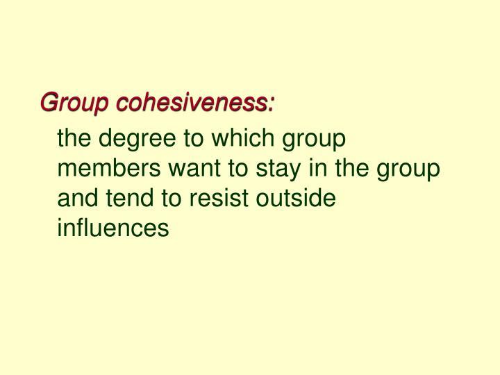 Group cohesiveness: