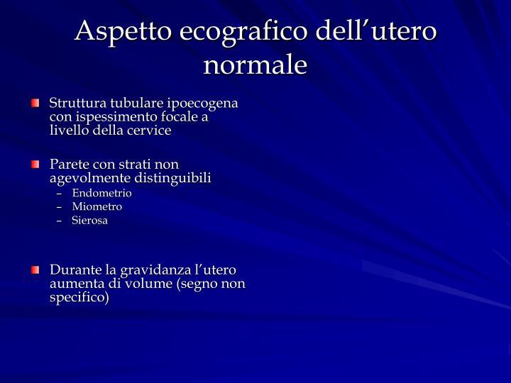 Aspetto ecografico dell'utero normale