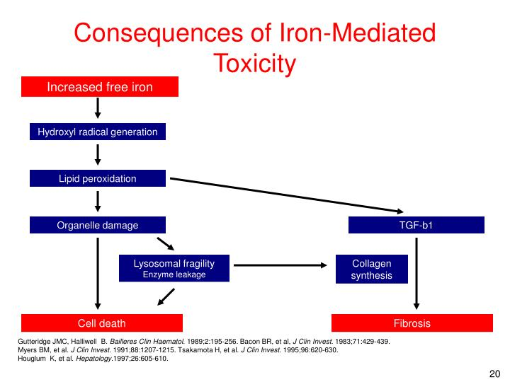 Consequences of Iron-Mediated Toxicity