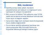 bal incelemesi1