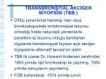 transbron yal akc er b yops s tbb