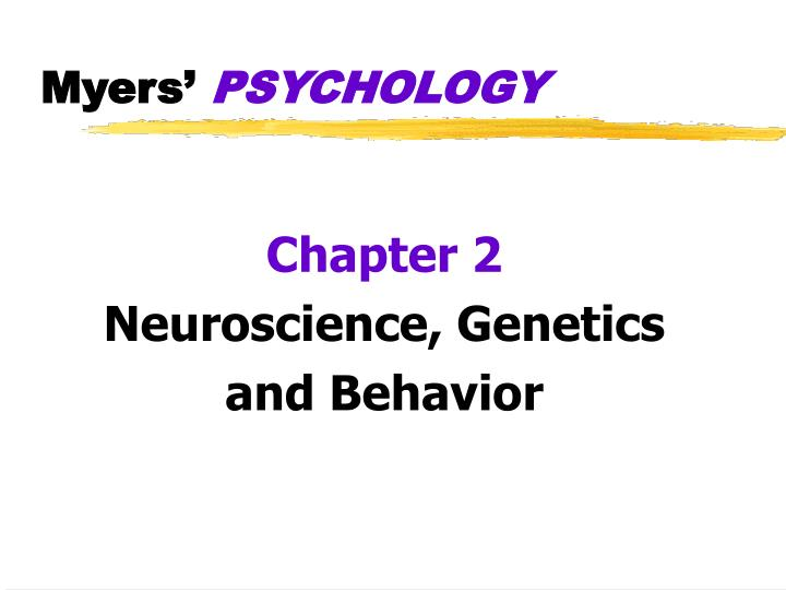 genetics brain structure and behavior presentation To get this material click this link – psy 340 week 3 learning team assignment genetics brain structure and behavior presentation.
