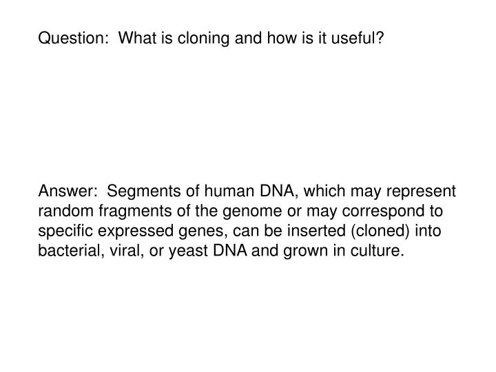 Question:  What is cloning and how is it useful?