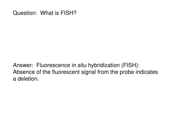 Question:  What is FISH?
