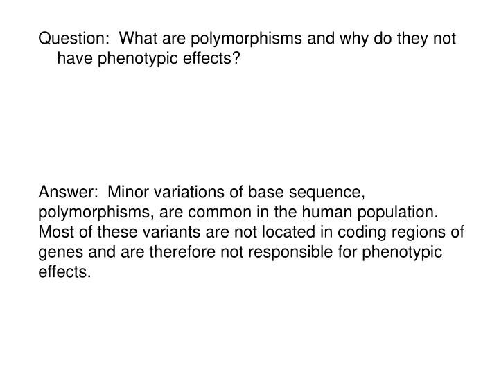 Question:  What are polymorphisms and why do they not have phenotypic effects?
