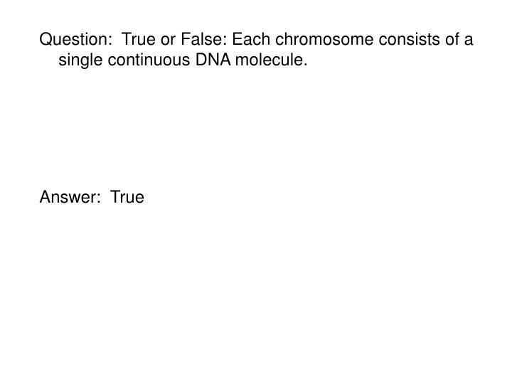 Question:  True or False: Each chromosome consists of a single continuous DNA molecule.