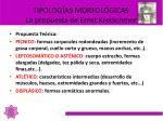 tipolog as morfol gicas la propuesta de ernst kretschmer2