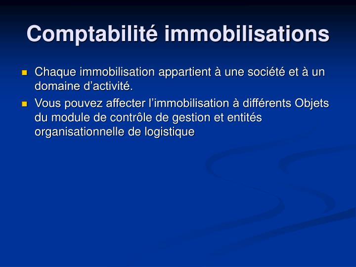 Chaque immobilisation appartient à une société et à un domaine d'activité.