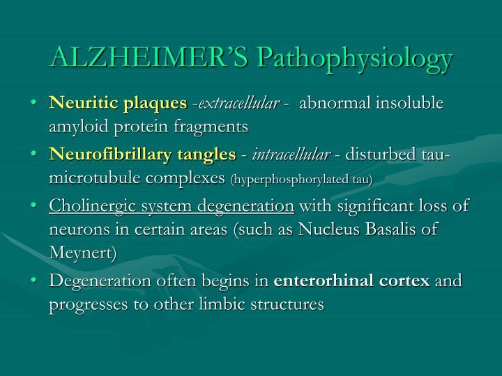 ALZHEIMER'S Pathophysiology