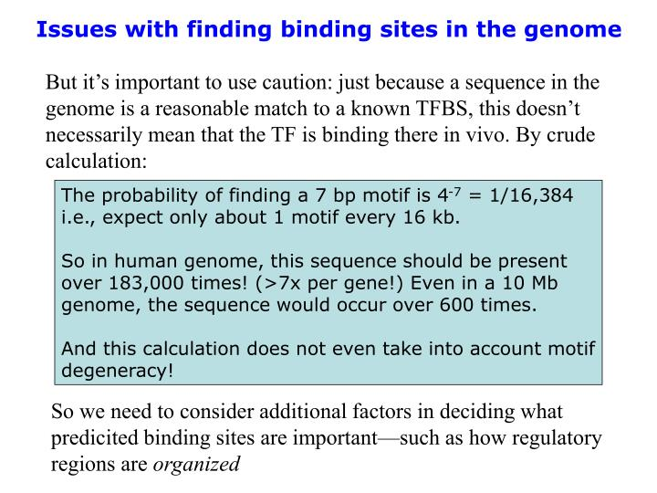 Issues with finding binding sites in the genome