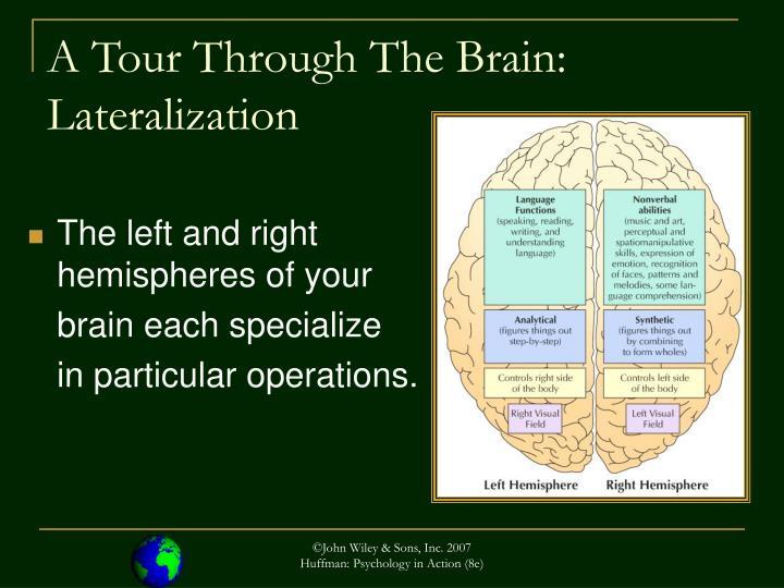 psychology in action karen huffman pdf