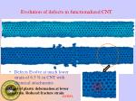 evolution of defects in functionalized cnt