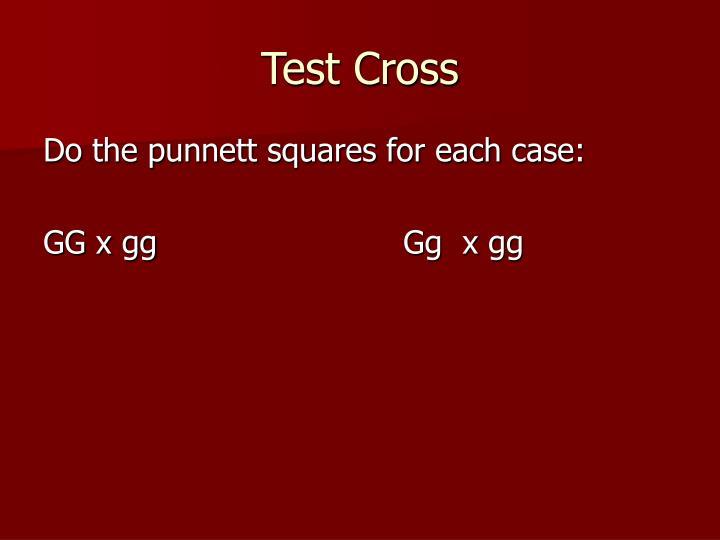 Test Cross