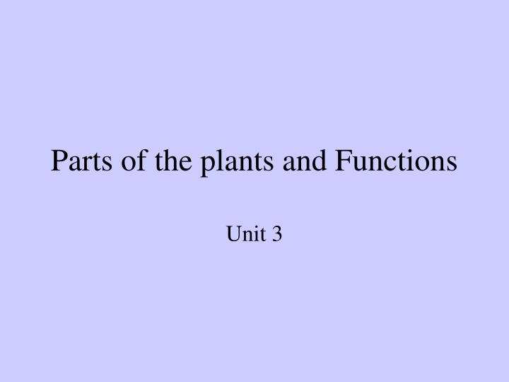parts of the plants and functions n.
