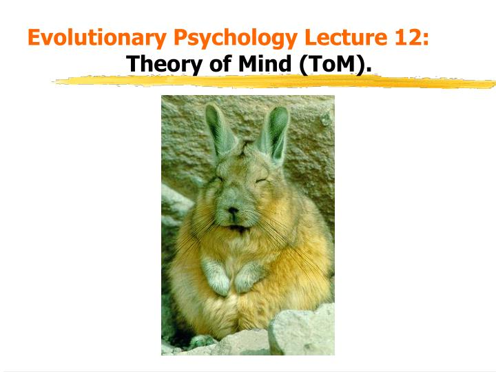 evolutionary psychology lecture 12 theory of mind tom n.