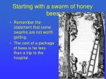 starting with a swarm of honey bees1