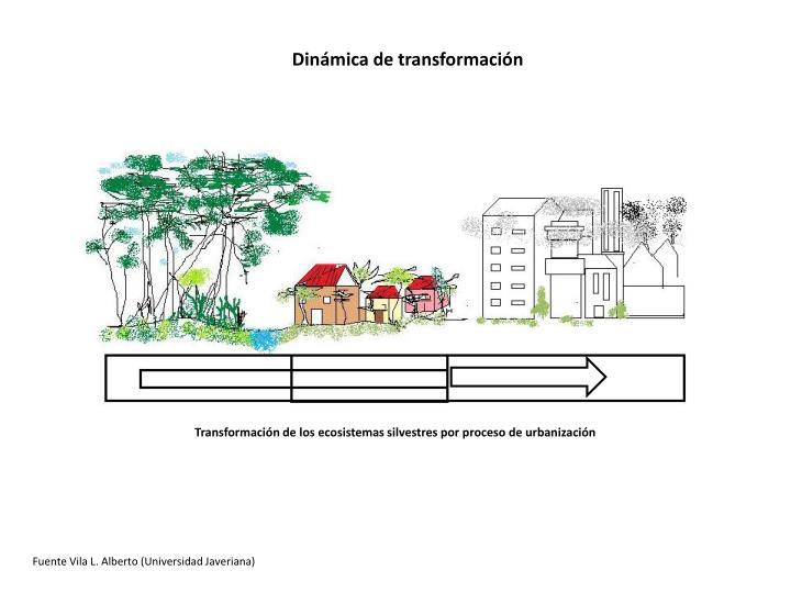 Dinámica de transformación