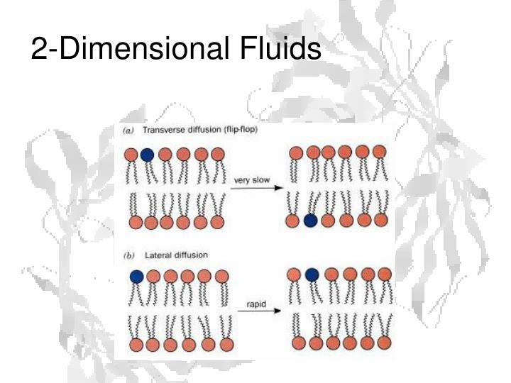 2-Dimensional Fluids