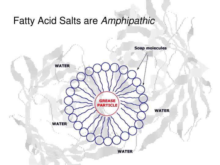 Fatty Acid Salts are