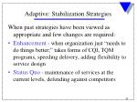 adaptive stabilization strategies