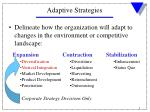 adaptive strategies