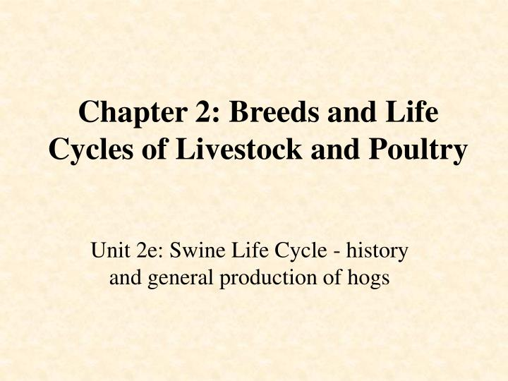 Chapter 2 breeds and life cycles of livestock and poultry