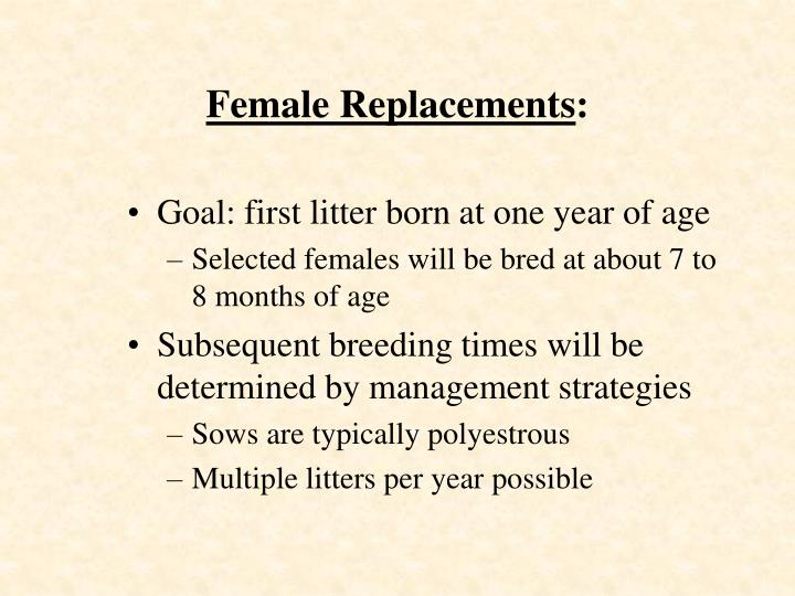 Female Replacements