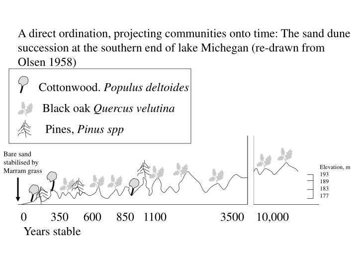 A direct ordination, projecting communities onto time: The sand dune succession at the southern end ...