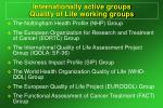internationally active groups quality of life working groups