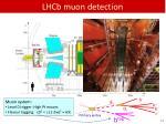 lhcb muon detection