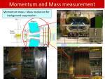 momentum and mass measurement