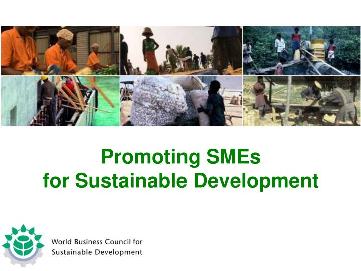Promoting SMEs