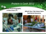 protein is cash 201145