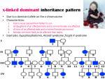 x linked dominant inheritance pattern