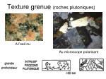 texture grenue roches plutoniques