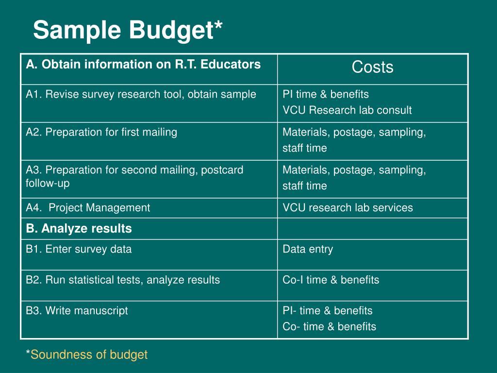 Sample Budget*