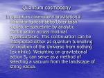 quantum cosmogeny